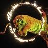 Цирки в Торжке